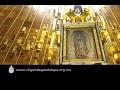 Peregrinación de la Arquidiócesis de Tlalnepantla, 4 de febrero de 2017