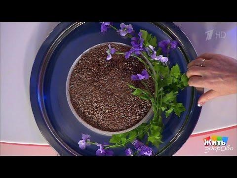 Льняное семя. Продукт-защитник.  Жить здорово! (05.12.2016)