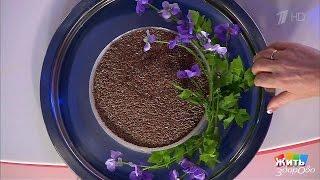 Жить здорово! Льняное семя. Продукт-защитник.  (05.12.2016)