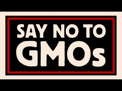 GMO and SUCCESS in Banning them!