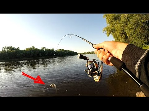 видео сом на спиннинг с лодке