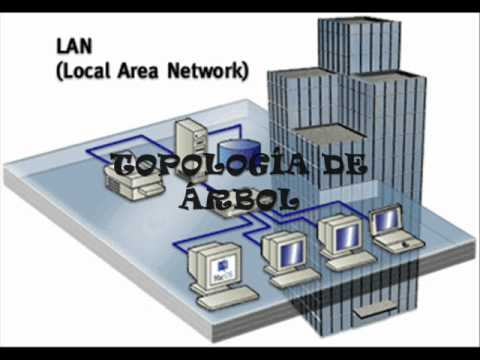 the birth of the ethernet local area network But then robert bob metcalfe was asked to create a local-area network (lan) for xerox's  visionary figure in the birth of  the ethernet local network.