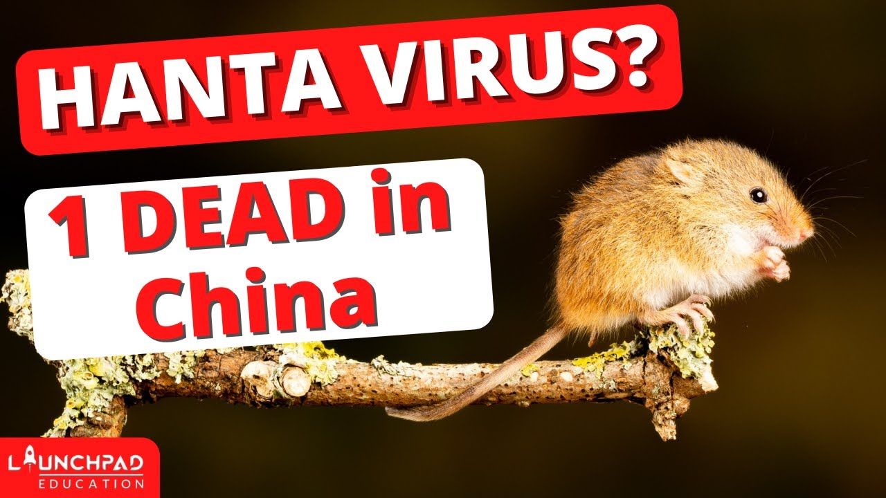 Does China Have a 'New' Outbreak of Hantavirus?