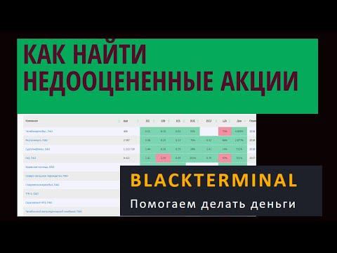 Фундаментальный анализ акций через сервис Blackterminal
