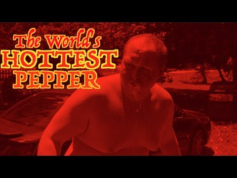 Eating The World's HOTTEST Pepper! [GOES TO HOSPITAL] Carolina Reaper Challenge