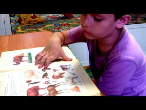 Фрагмент индивидуального занятия с ребенком с ОНР