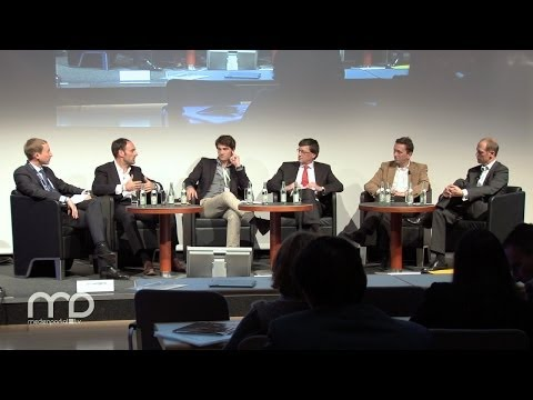 Panel: German Entertainment and Media Outlook 2013-2017