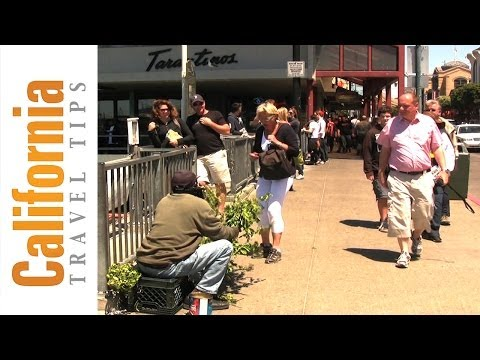 The Bush Man Of Fisherman's Wharf, San Francisco | California Travel Tips