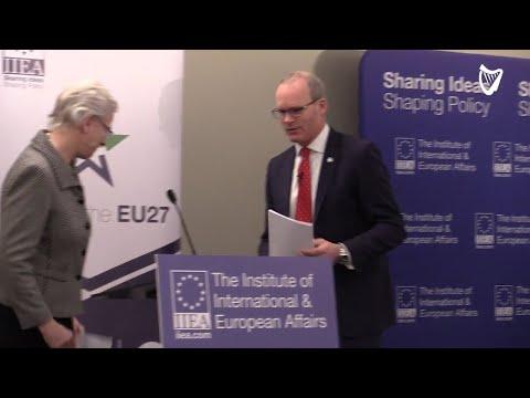 VIDEO: Tánaiste Simon Coveney Addresses The Countdown To Brexit