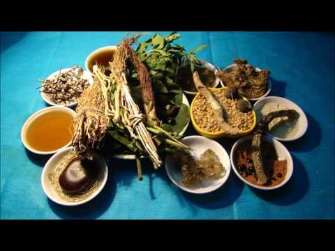 Tribal Herbal Medicines for Cancer Prevention and Cure by Pankaj Oudhia-1114