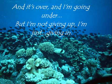 Never Let Me Go - Florence And The Machine Lyrics