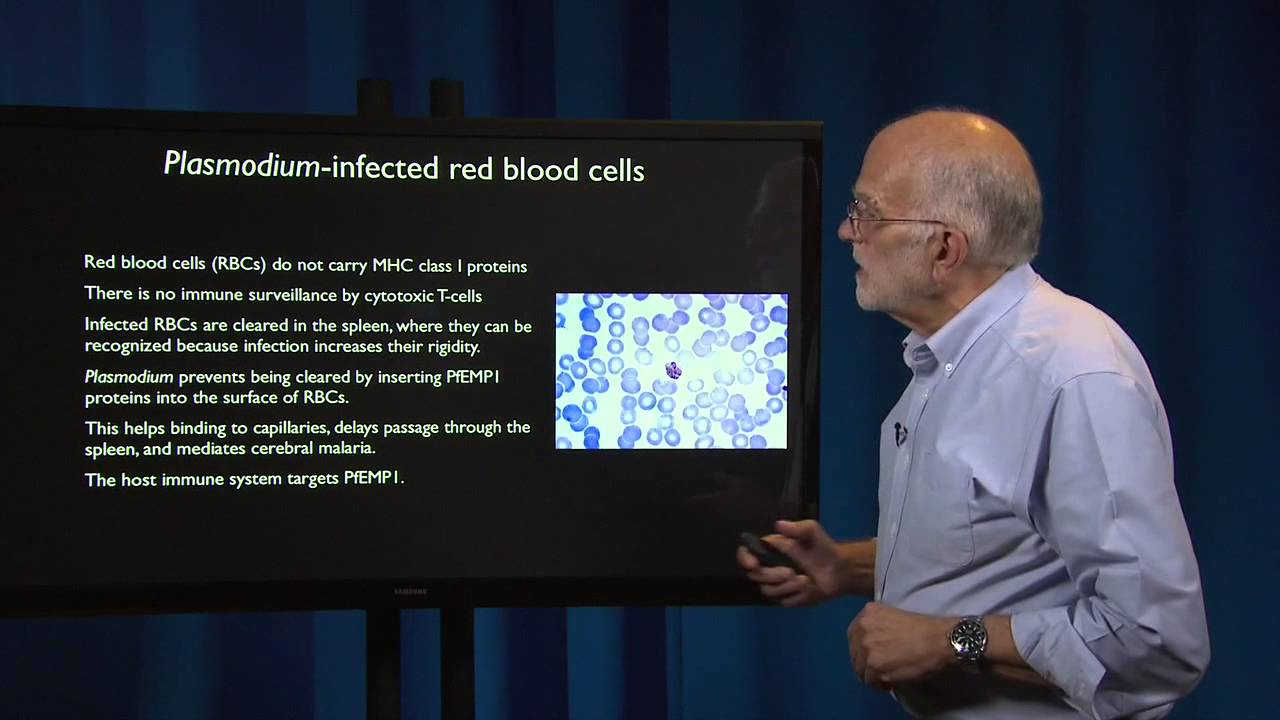 5.4 - Pathogen evolution: Evading defenses