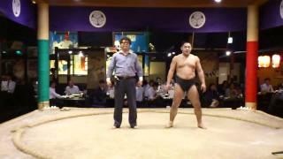 大江戸八百八町花の舞で「あかつ」と共演? http://r.gnavi.co.jp/g863263/