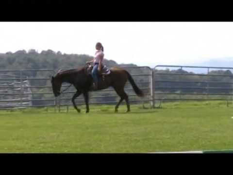 Western Horse Training - Tina Derby Interviews Findlay Student Jacki St Cyr - New Hampshire