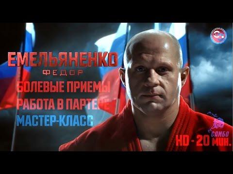 Федор Емельяненко болевые