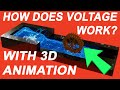 🍉 Voltage Explained with 3D Animations