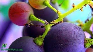 Erythritol může být sladkým antioxidantem