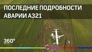 """Последние подробности аварии А321 """"Уральских Авиалиний"""""""