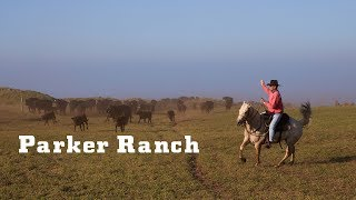 Video YETI Presents: Parker Ranch download MP3, 3GP, MP4, WEBM, AVI, FLV Juli 2018