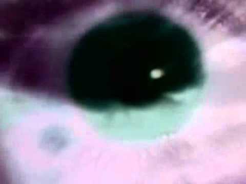Black Mamba: Watch ur back (2006)