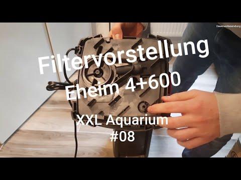 Eheim Professionel 4+ 600 | Filtervorstellung 2/2 | XXL Aquarium #08