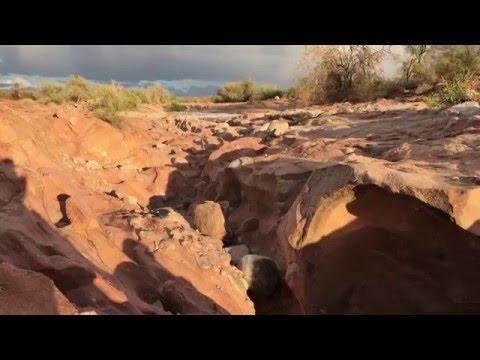 FLASH FLOOD in Arizona