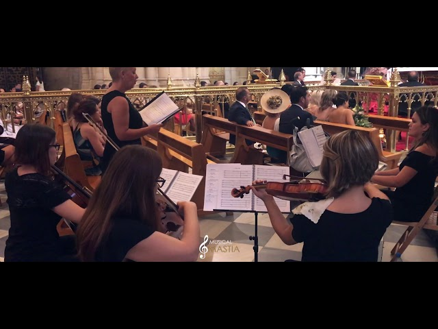 🎼 La Vida Es Bella   Orquestas en Murcia   Musicos para Bodas Murcia   Musical Mastia