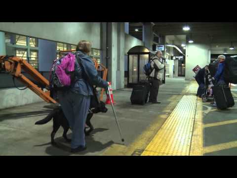 How Detroit Metro Airport Treats Bus Riders with Disabilities