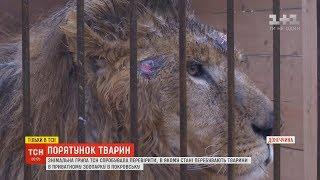 ТСН спробувала перевірити, в якому стані перебувають тварини в зоопарку на Донеччині