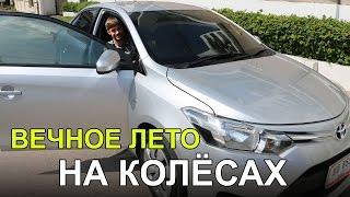 видео аренда машин