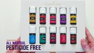 The Oily Dream Team   Young Living Kit