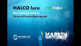 MARLIN GROUNDS | HALCO lure Swimming action 16 cm at 8 knots (boat speed)