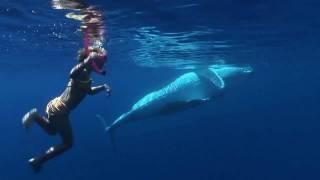 The Children & The Ocean Episode 2.m4v