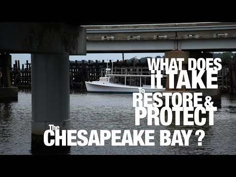 PSA: What does it take to restore and protect the Chesapeake Bay?
