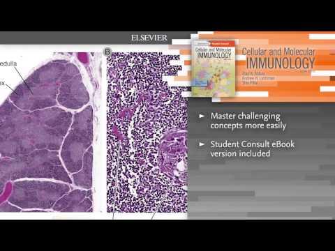 Cellular and Molecular Immunology, 8th Edition