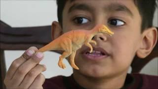 Hamza Ahmed introducing his dinosaur collection