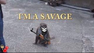 SAVAGE MONKEYS (VOICE OVER)