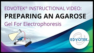 Preparing an Agarose Gel For Electrophoresis - Edvotek Video Tutorial