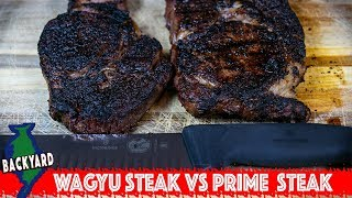 Wagyu Ribeye Steak vs Prime Ribeye Steak- Is Wagyu Worth the Extra Money?