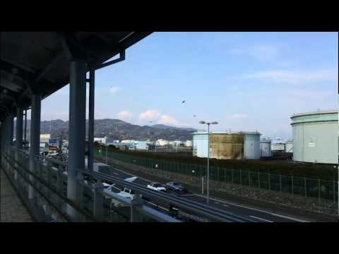 ★562- Shizuoka & Shimizu! (Spring Break Part 3) (Abroad in Japan)