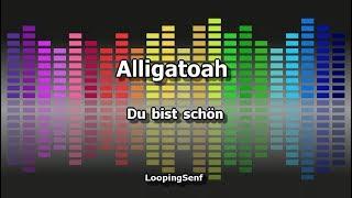 Alligatoah - Du Bist schön - Karaoke