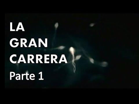 La Gran Carrera [Discovery Channel] (Parte 1 de 2)