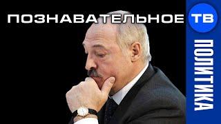 Европа назвала срок жизни Лукашенко. Наглость европейской демократии