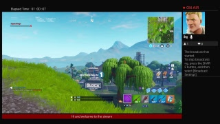 Fortnite stream and chat