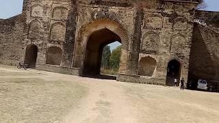 Video Sultana Daku Ka Kila Najibabad download MP3, 3GP, MP4, WEBM, AVI, FLV November 2017