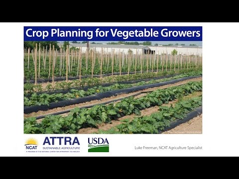 Crop Planning for Vegetable Farmers