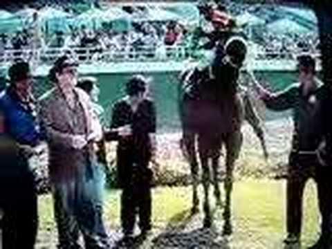 Miss Saigon, Poet Dennis' Siluk's Horse Wins Race In Lima