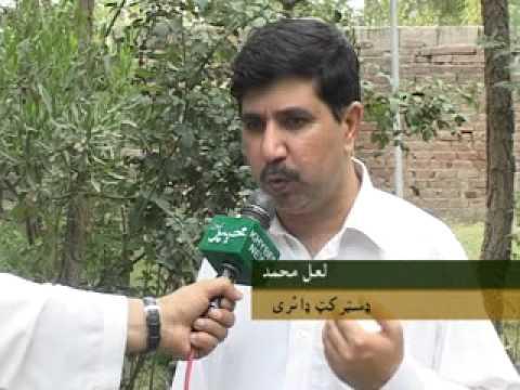 District Dairy Mardan Turo Mohammad Arif