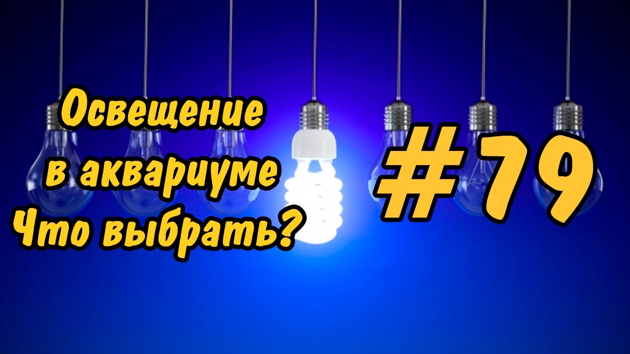 #79 ЛАМПЫ ДЛЯ АКВАРИУМА. Ч 1.Lighting in the aquarium. Lamp for aquarium. P 1.