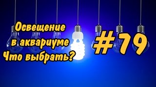 #79 ЛАМПЫ ДЛЯ АКВАРИУМА. Ч 1.Lighting in the aquarium. Lamp for aquarium. P 1